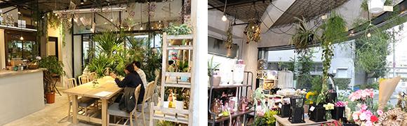 写真:(左)カフェの様子。(右)ローランズ原宿店、店内で花が飾ってある様子
