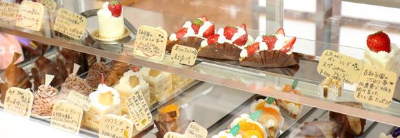 写真:ショーケースに10種類ほどのケーキが並んでいる様子